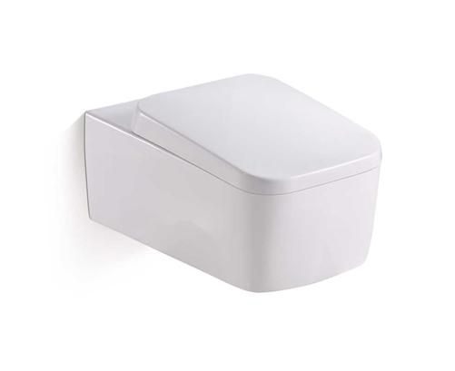 cach-lua-chon-ban-cau-toilet-phu-hop-3